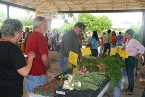 Fredericksburg Farmers Market Every Thursday