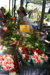 Fredericksburg Farmers Market on Marktplatz every Thursday